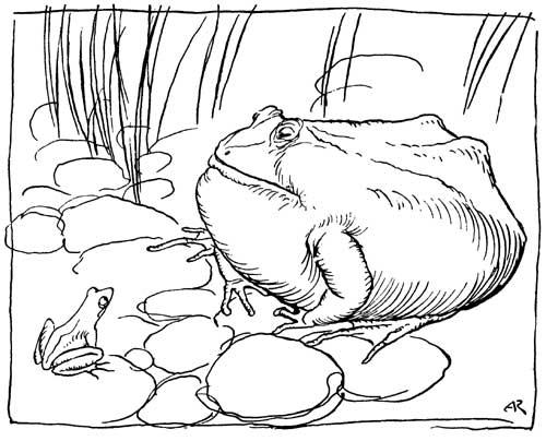 La rana de la fábula de Esopo